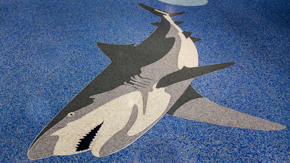 7-Shark-Alabama-Welcome-Center